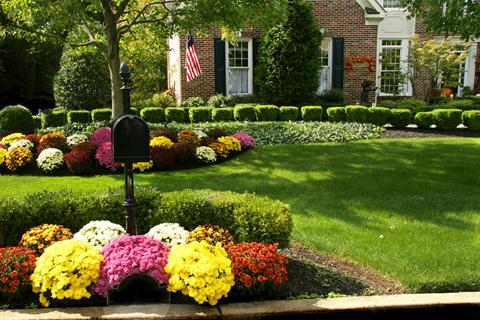 Keeping your Fall garden full of color - Michigan Bulb Blog Michigan ...