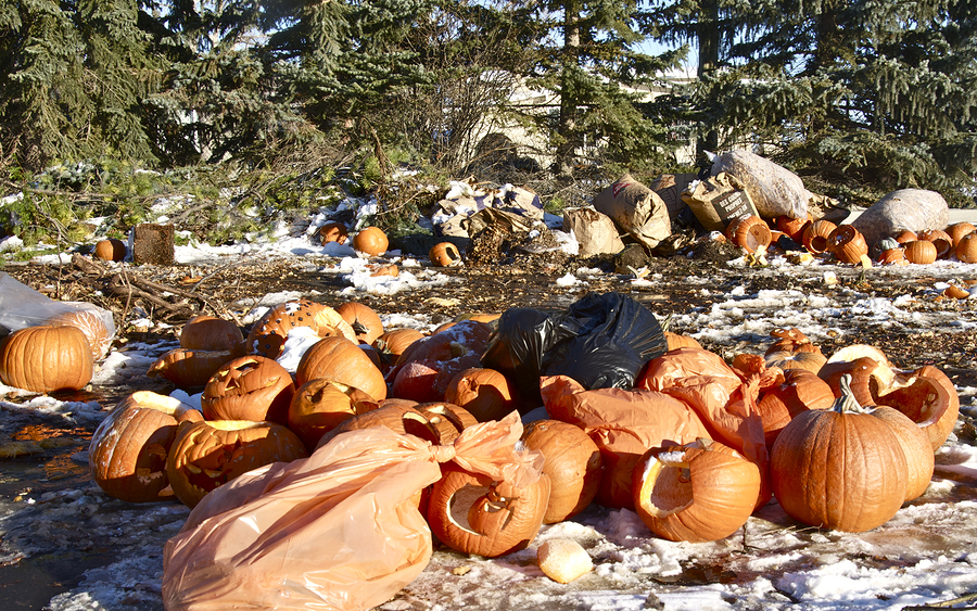 bigstock-Leaf-and-Pumpkin-Recycling-Dep-54133292
